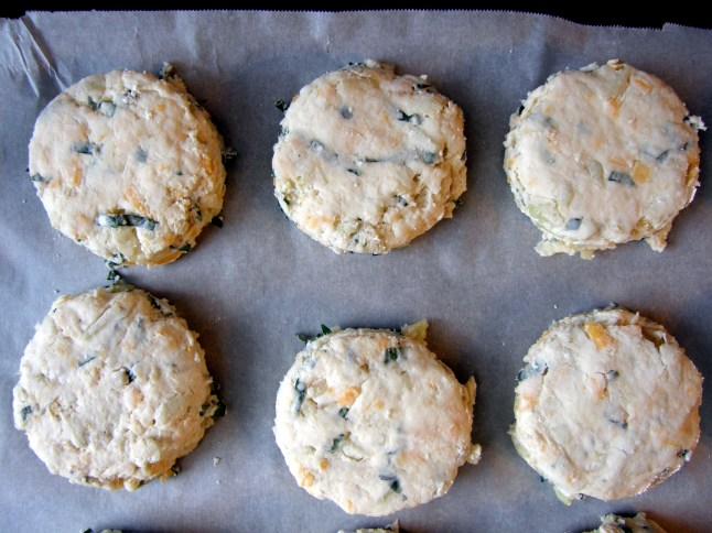 Apple, Basil, Cheddar Biscuit Dough (Paige's Family Dinner Biscuit)