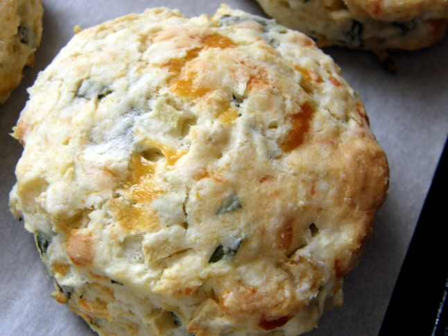 Apple, Basil, Cheddar Biscuit (Paige's Family Dinner Biscuit)