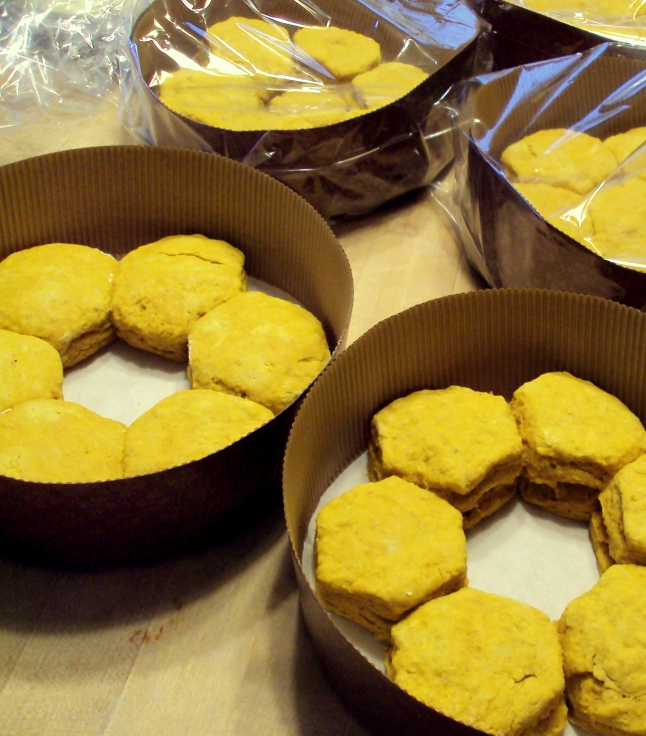Pumpkin Biscuits | Persnickety Biscuit