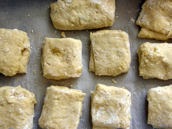 Biscuit Dough| Persnickety Biscuit